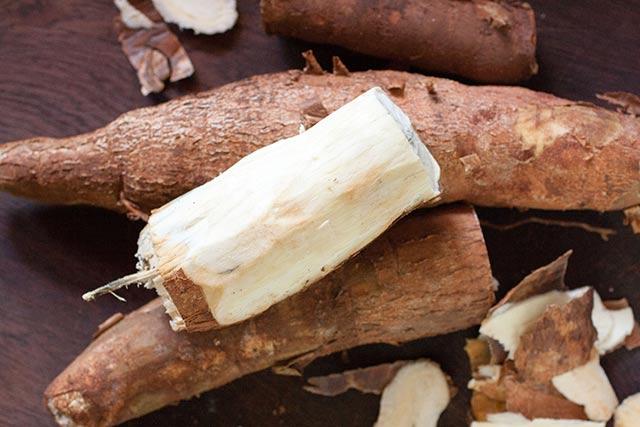 racine de manioc en afrique