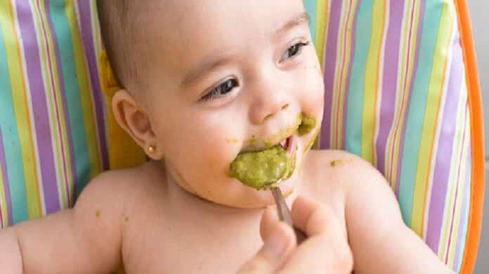 premiers nourriture pour bébé